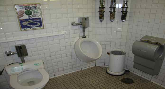 NYC Toilets – Bloomberg's Greatest Failure